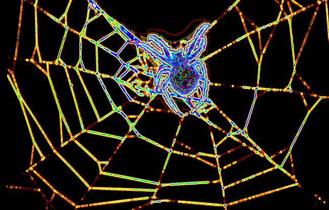 Glowing-Spider_art